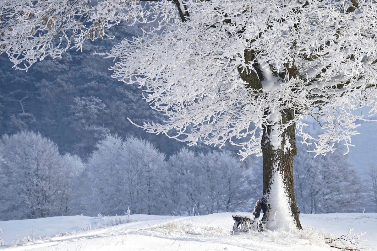 winter 4680354 1920